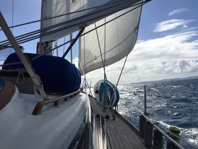 Chiropractor Fenton Michigan Sailing 1