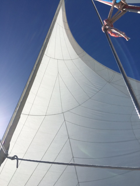 Chiropractor Fenton Michigan Sailing 2