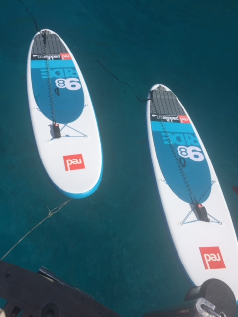 Fenton Chiropractor - BVI Sailing Picture Diary - Paddleboards