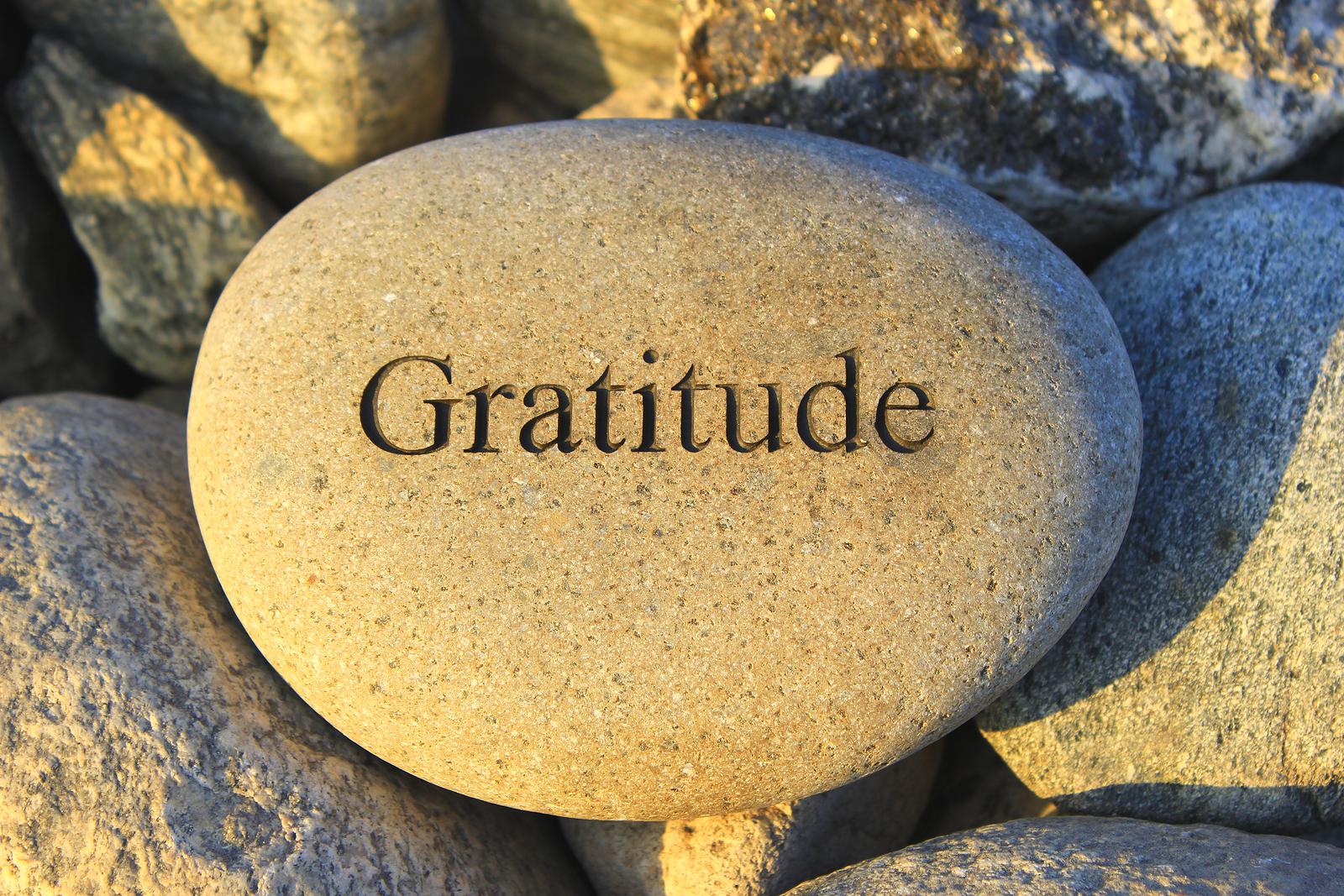 Chiropractor Fenton Michigan - Gratitude